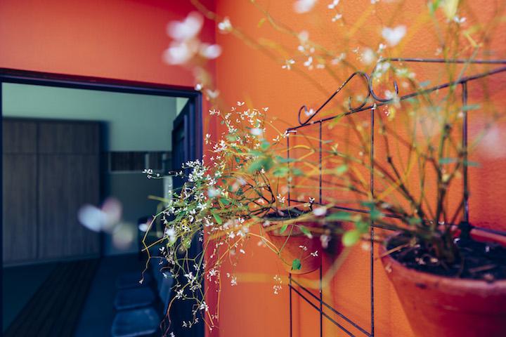 Dojo_Aikido_2018_3356